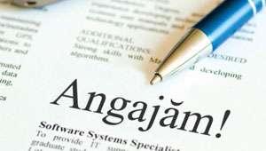 246 de locuri de muncă disponibile pentru şomerii din Maramureş. Aflaţi în ce domenii