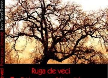 """A ieșit de sub tipar ediția bilingvă a volumului de poezii """"Ruga de veci"""" de Ioan Dorel Todea"""
