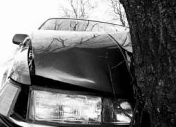 A intrat cu maşina într-un copac de pe marginea drumului