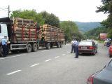 Acțiune pentru protejarea fondului forestier - Polițiștii au aplicat 82 de sancțiuni într-o singură zi