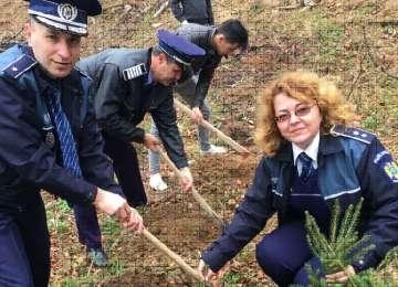 Activitate de împădurire - Creştem împreună într-un mediu sănătos