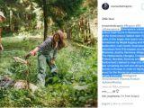 Actorul Leonardo DiCaprio atrage atenția asupra situației pădurilor din România