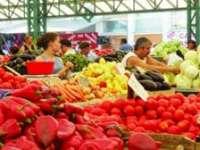 Alimentele s-au ieftinit, în iulie, în medie cu 1,17%