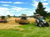 Ambasadorul Argentinei: România face parte din grupul select al ţărilor cu cel mai fertil teren agricol