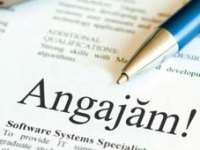 Angajări: 118 joburi vacante în Maramureş