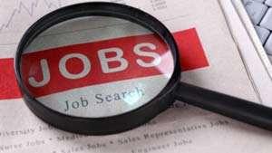 ANGAJĂRI: 144 locuri de muncă vacante în Maramureş