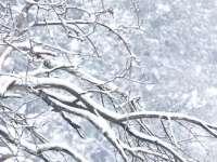 ANM: Informare de vreme rece, ninsoare și viscol în toată țara, până marți la ora 23:00