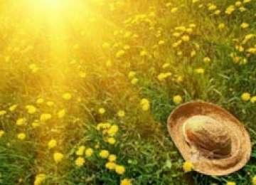 ANM: Vreme caldă în Maramureş, în următoarele două săptămâni