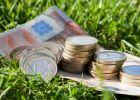 APIA a demarat plata subvenţiilor începând de vineri, 24 februarie