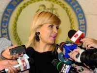 Arestarea Elenei Udrea în dosarul Gala Bute a fi decisă miercuri la ICCJ