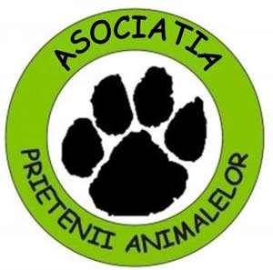 """Asociația """"Prietenii animalelor"""" demarează o nouă campanie de sterilizare gratuită a câinlor fără stăpân"""