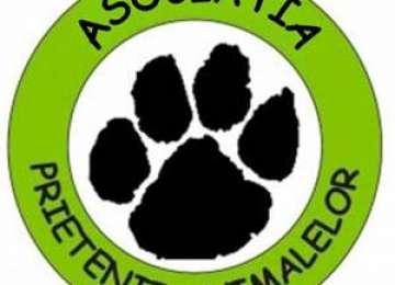 """Asociația """"Prietenii animalelor"""" oferă spre donație câțiva cățeluși drăgălași"""