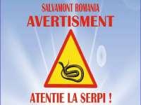 Atenţie la şerpi! - Salvamontiştii trag un semnal de alarmă