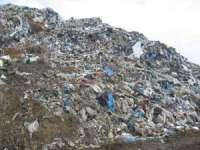 Autoritatile din Borsa, somate sa grabeasca desfiintarea gropii de gunoi