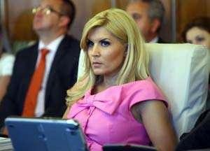 Averea Elenei Udrea, verificată de ANI
