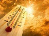 AVERTIZARE METEO - Caniculă şi disconfort termic în Maramureş până duminică