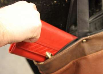 BAIA MARE: Furt cu un prejudiciu de 1000 de lei clarificat de poliţişti