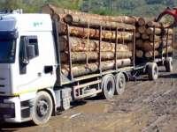 BISTRA - Autoutilitară ce transporta ilegal material lemnos, indisponibilizată de poliţişti