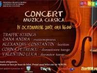 BORȘA - Concert de muzică clasică în weekend