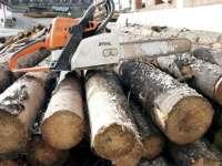 BORȘA - Sancţiuni aplicate de Poliție și Garda forestieră pentru abateri silvice