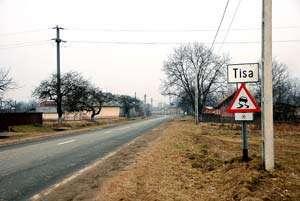 Cadavrul unui cetăţean austriac a fost găsit pe un câmp între Tisa şi Crăciuneşti