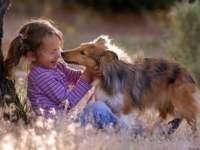 Câinele are un important rol antistres pentru copii