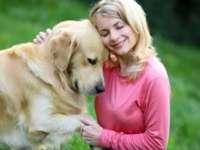 Câinii au capacitatea de a percepe emoțiile umane
