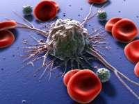 Celulele canceroase pot fi țintite prin proteine create prin tehnici de bioinginerie