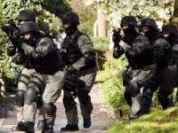 CHICAGO - O familie de români care tăia porcul de Crăciun, a fost luată pe sus de trupele SWAT