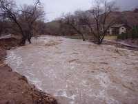 Cod galben de inundații pe râurile din Maramureș
