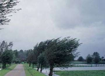 Cod galben de ploi şi vijelii, până joi seara