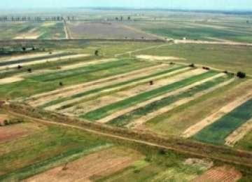 COMASAREA TERENURILOR AGRICOLE – Fermierii pot primi până la 1500 de euro/an