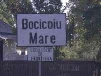 Comuna Bocicoiu Mare riscă să ramână fără Consiliu Local