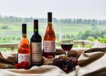Consumul moderat de vin are efecte benefice asupra organismului