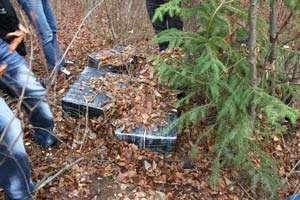 CONTRABANDĂ: Țigări în valoare de 75.000 lei confiscate la frontiera cu Ucraina