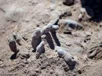 Corpurile a 365 de jihadiști, descoperite în 19 gropi comune în Irak