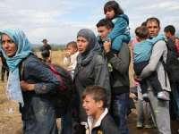 CRIZA IMIGRANȚILOR: Eurodeputații propun un sistem UE centralizat pentru cererile de azil, cu cote naționale