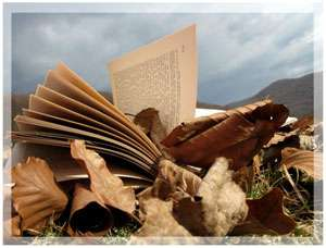 Cum ne ajută lecturarea operelor de ficţiune