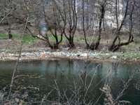 Curăţenie generală pe râurile din Maramureş până în 14 aprilie