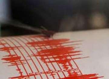 Cutremur de 2,7 grade pe scara Richter în Gorj