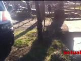 DESCOPERIRE MACABRĂ – Bărbat din Șomcuta Mare, găsit mort în pârâul Chiuzbaia