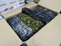 DIICOT: Captură de 351 kg frunze de khat, droguri aduse din Tanzania