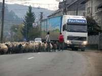 DJ 186 (Vadu Izei - Săcel), cel mai periculos drum din Maramureş în anul 2013