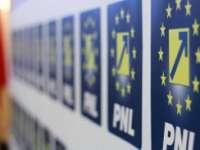DNA intră în forţă în PNL - Află la ce se preta un lider de partid