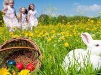 Elevii vor avea două săptămâni vacanță de Paște