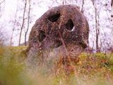 ENIGMELE ISTORIEI – Misterul crucilor celtice care au apărut în Maramureș