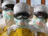 Epidemia de Ebola din Liberia s-a încheiat, conform OMS