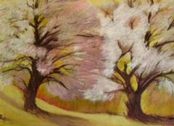 Expoziția de pictură Dansul Naturii, a artistei Silvia Boar la Sighetu Marmației