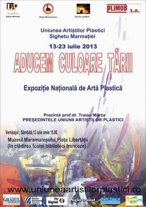 Expozitie Nationala de Arta Plastica la SIGHET in perioada 13-23 iulie