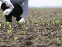 Fermierii români au primit 769 de milioane de euro în 2014